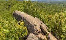 гора Лягушка